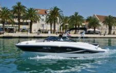 Motorboot Sea Ray 190 Sport