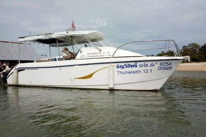 Charter Motorboat Custom Power Catamaran 8mt Phuket
