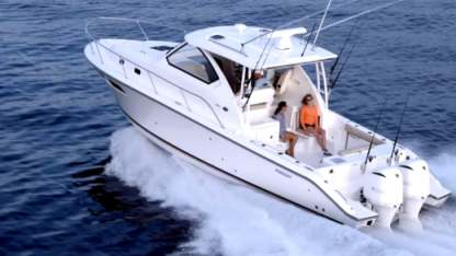 Charter Motorboat Pursuit 35 Aventura