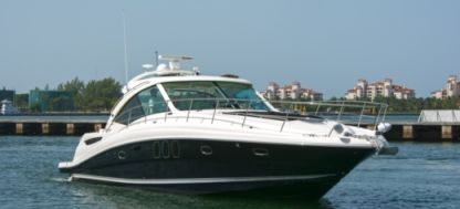 Rental Motorboat Sea Ray 48 Sundancer Yacht Miami Beach