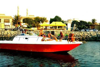 Charter Motorboat Silver Craft 36 Dubai