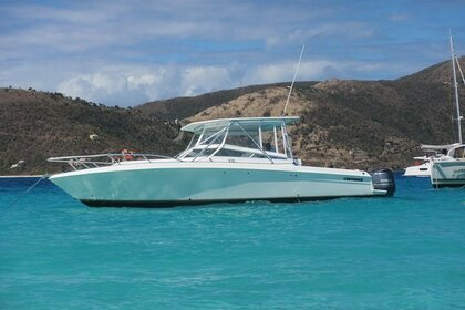 Charter Motorboat Contender 23 Road Town