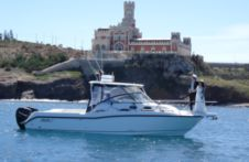 Boston Whaler Conquest 305 in Marzamemi for hire