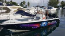 Motorboat Bessarion Ballisctic 27 for hire