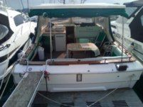 Motorboot Sea Ray W310
