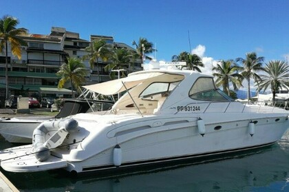 Miete Motorboot Sea Ray Sundancer 54 Bas du Fort