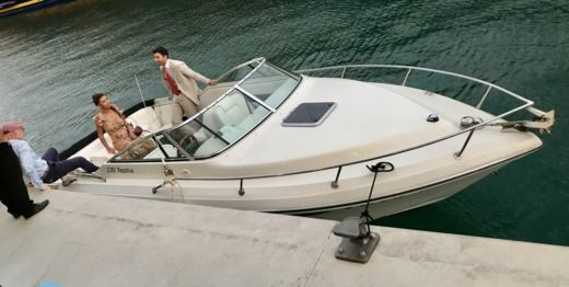 Motorboat Rinker 230 Festiva for rental