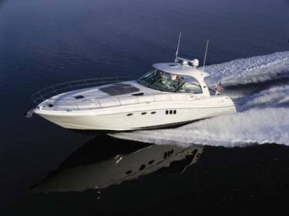 Rental Motorboat Sea Ray 52 Sundancer Palm Beach