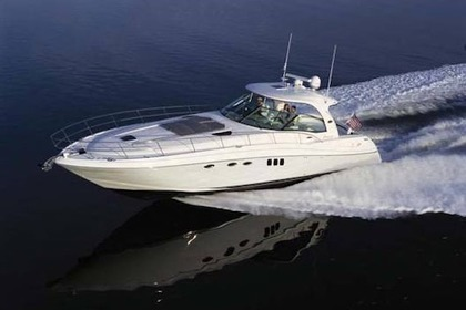 Charter Motorboat SEA RAY 52 Sundancer Palm Beach