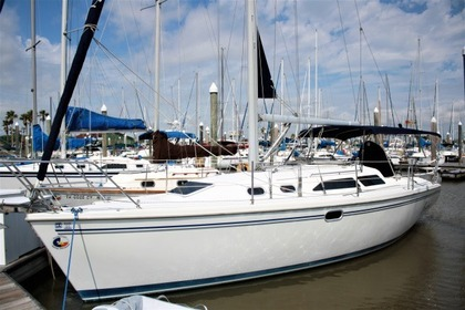 Rental Sailboat Catalina 320 Kemah