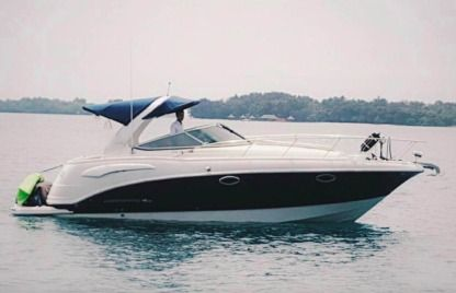 Rental Motorboat Chaparall 290 Naples