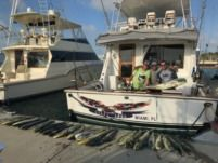 Motorboat Donzi Sportfish for rental