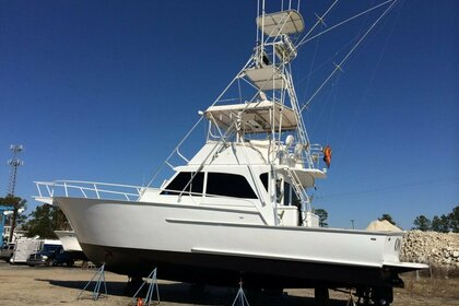 Charter Motorboat Striker Sportfisherman 60 Chesapeake