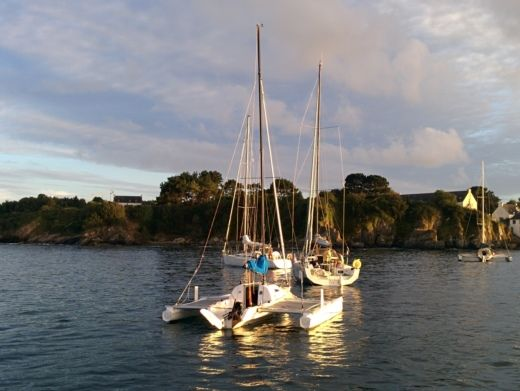 Sailboat Tricat T25 for hire