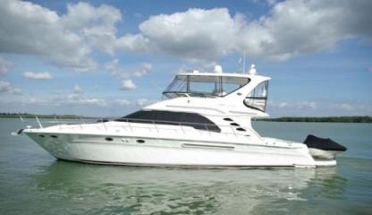 Rental Motor yacht Sea Ray 48 Naples