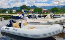 Sacs 490 Young in Saint-Florent for hire
