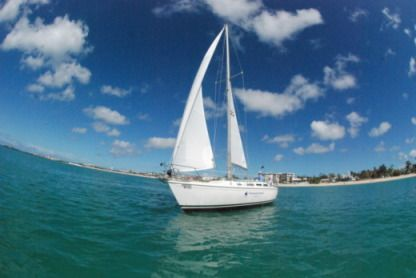 Location Voilier Catalina Yachts 36 Simpson Bay