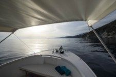 Techno Yachts Puma in Monterosso al Mare for hire