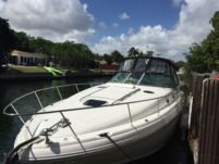 Motorboat Sea Ray 37 for hire