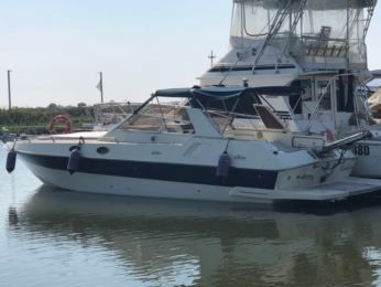 Charter Motorboat Ilver Chihuahua 35 Terracina