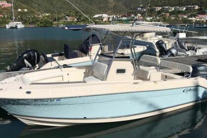 Charter Motorboat Cobia 24 Road Town