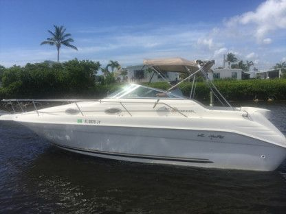 Rental Motorboat Sea Ray 250 Sundancer Palm Beach