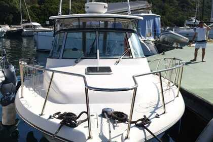 Rental Motorboat Pursuit 3070 off-shore Santa Teresa Gallura