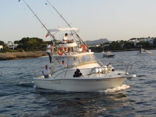 Motorboot Pursuit Offshore zwischen Privatpersonen