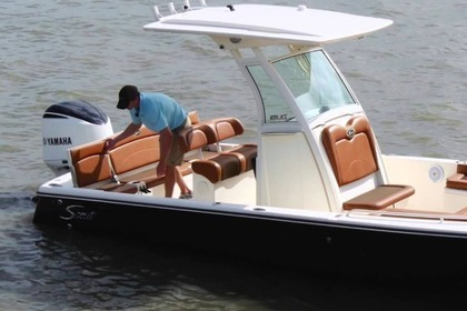 Rental Motorboat Scout Scout 251 XS Charleston