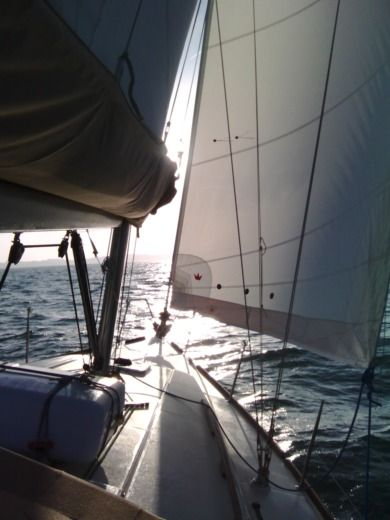 Sailboat DUFOUR 375 GL for hire
