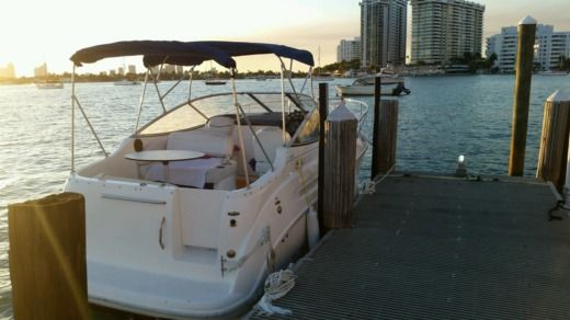 Motorboat Bayliner Cierra 2450 for rental
