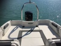 Motorboat Bayliner Element Xl