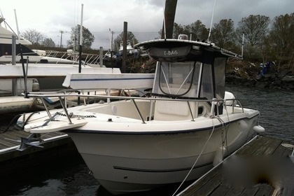 Rental Motorboat Sea Boss 235 CC New York