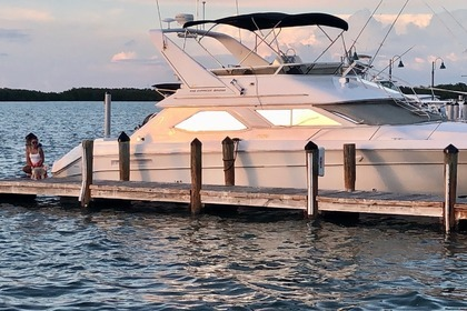 Rental Motor yacht Sea Ray 440 Islamorada