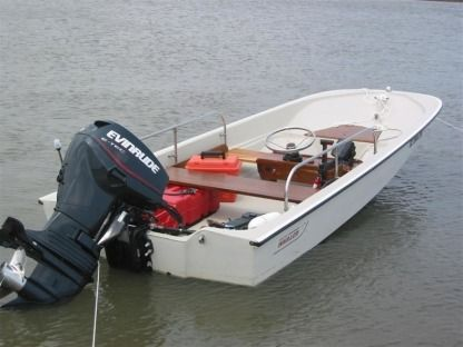 Charter Motorboat Boston Whaler + Evinrude Sport 15 Toulon