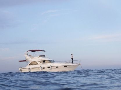 Rental Motorboat Princess 38.8 Orihuela Costa
