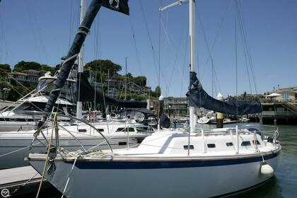Rental Sailboat Ericson Sloop Oakland