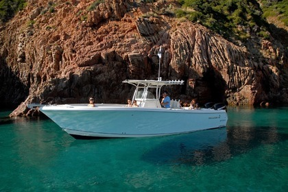 Hire Motorboat Sailfish 2010 Porto-Vecchio