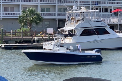 Aluguel Lancha Sea Hunt Motor Boat Charleston