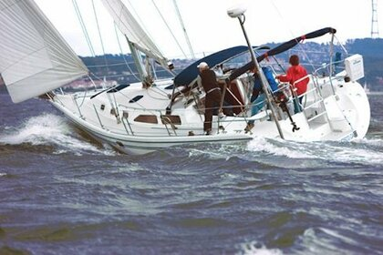 Charter Sailboat Catalina 42 Sausalito