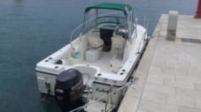 Motorboat 2005 Trophy 2002 Wa for rental