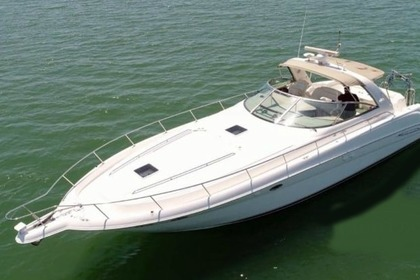 Charter Motorboat SEA RAY 460sundancer Porto
