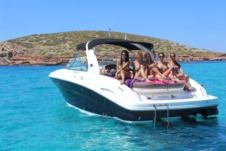 Lancha Sea Ray 295