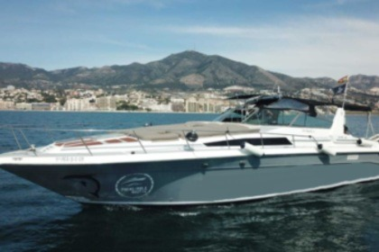 Miete Motorboot SEA RAY 440 Sea ray, dolphin watching Fuengirola