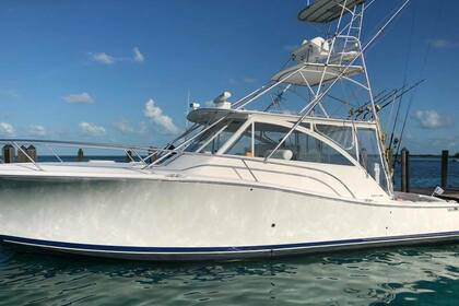 Rental Motorboat LUHRS 41 EXPRESS Homestead