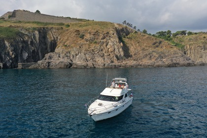Rental Motorboat Marine Project Princess 388 Argelès-sur-Mer