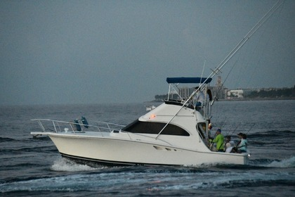 Hire Motorboat Luhrs 320 Tournament Palm Beach