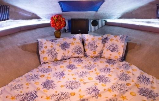 Houseboat Bayliner 2651 da noleggiare