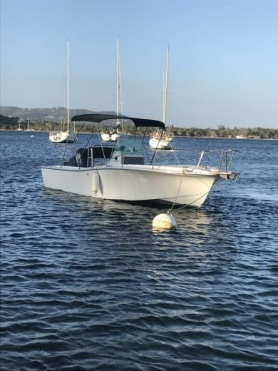 Lancha Chris Craft Sea Hawk 213