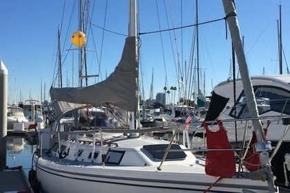 Hire Sailboat Catalina 36 San Diego